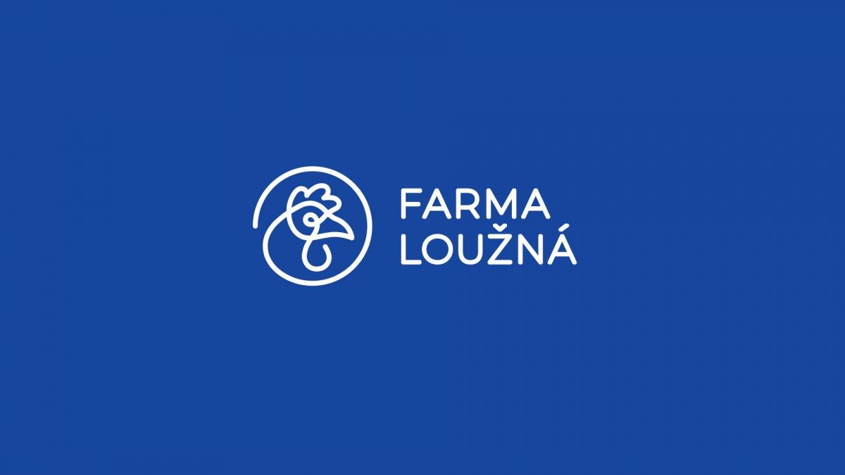 Logo a vizuální styl